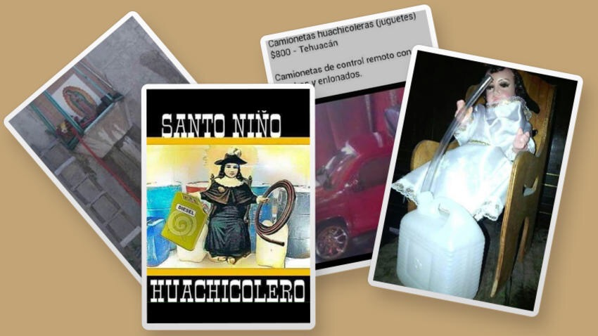 Que Es La Huachicultura Poblana Transporte Mx